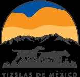Vizslas de México